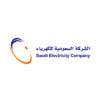 عملاء مصانع الناصر-الشركة السعودية للكهرباء